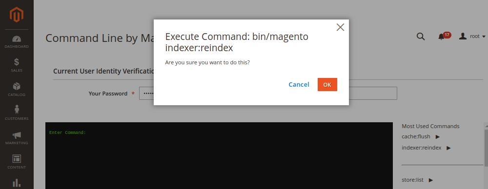 Execute Command Line Interface in Magento 2