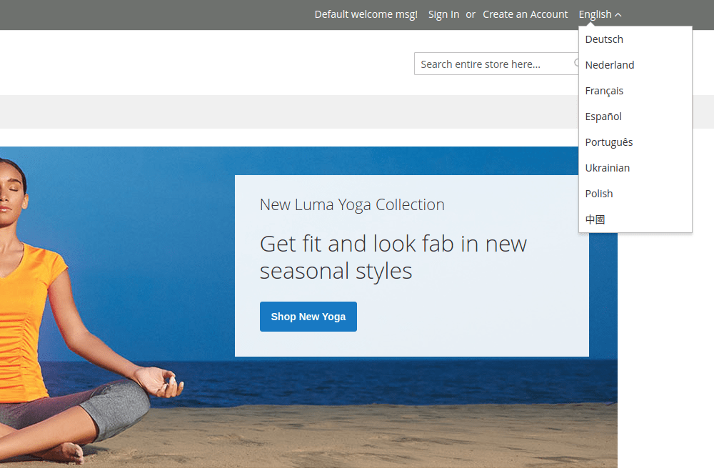 Magento 2 store view on the storefront